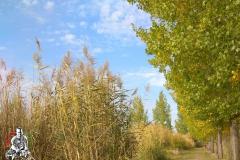 2018-10-07-Kunsag-tava-Fegyvernek-IMG_20181007_152225