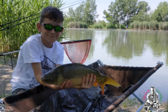2019-06-10-Kunsag-Tava-Fegyvernek-IMG_20190612_062030