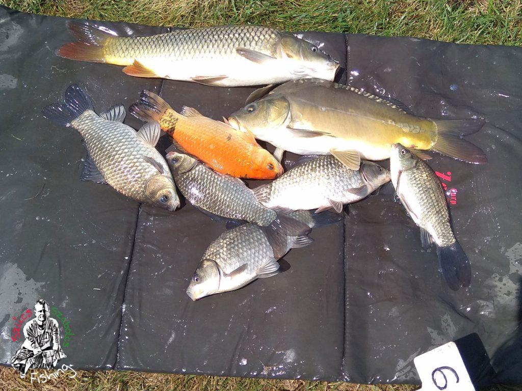 2017.06.11. Tiszatenyő horgászverseny